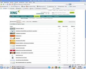 Die XING-Gruppensuche